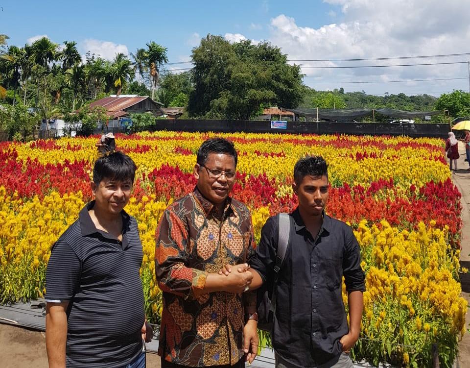 Taman Bunga Celosia Banda Aceh